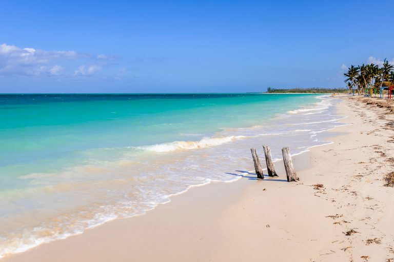 A photo of a beach and ocean for World Environment Day